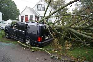 A tree crushed a SUV on Shed Street in Quincy.