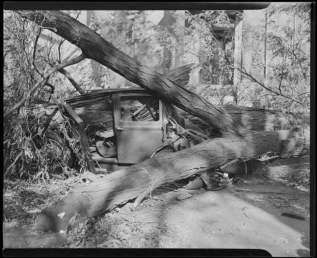 An estimated 26,000 automobiles were destroyed and 20,000 electrical poles were toppled.