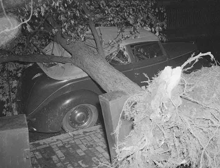 This car was crushed in Cambridge