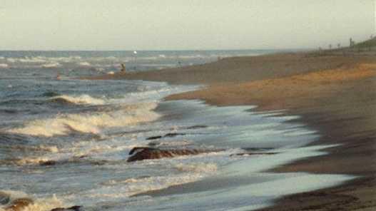 11.) Cape Cod National Seashore, MA -- 206 busts