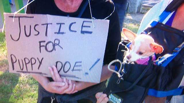Animal activists brought their own dogs to the vigil and rally for Puppy Doe.