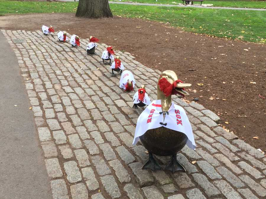 "The Boston Public Garden's ""Make Way For Ducklings"" family are dressed up in jerseys and sporting red beards to support the Red Sox."