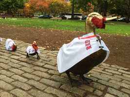 """The Boston Public Garden's """"Make Way For Ducklings"""" family are dressed up in jerseys and sporting red beards to support the Red Sox."""