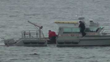 A swimmer, who was treading water off the coast of Beverly for more than an hour, was rescued Sunday morning.