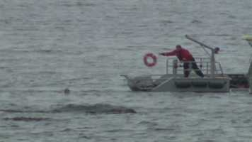 The 23-year-old swimmer was stranded about 200 yards off Mingo Beach near Endicott College.