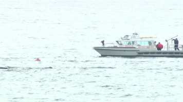 The Beverly harbormaster and a dive team were able to reach the swimmer and pull him to their boat.