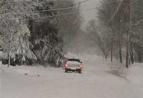 The ice and snow downed wires and trees across the state.
