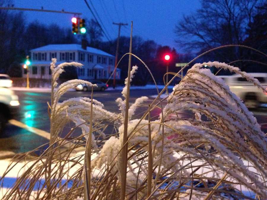 Snow in Abington.
