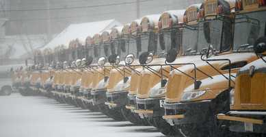 School buses covered in snow.