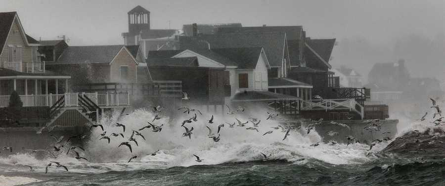 Gulls fly into the strong wind off the water at the Sand Hills neighborhood of Scituate at high tide, Thursday.