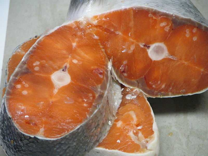 Try eating foods high in fats and protein -- like wild salmon.