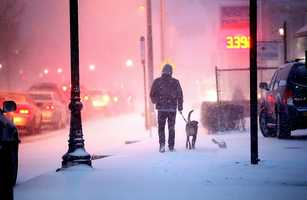 A man and his dog stroll in the snow near South Braintree Square.Snow began to fall around 4pm across the South Shore as a major winter storm was expected to hit the region, Tuesday, Jan 21, 2014.