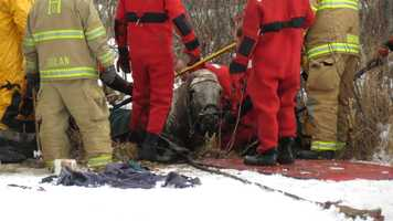 Firefighters were able to save a horse that fell into an icy marsh Saturday after a rescue that lasted nearly three hours.