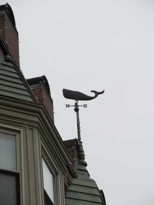 "On top of a building on Centre Street in Jamaica Plain is a weather vane with a whale on it. The building was once the headquarters of Greenpeace, whose environmental slogan ""Save the whales"" was known worldwide."