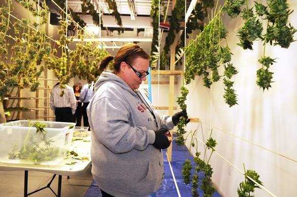 Rhode Island's Thomas C. Slater Compassion Center, a medical marijuana dispensary, could be a model for as many as three dozen facilities that could open in Massachusetts in the next year.