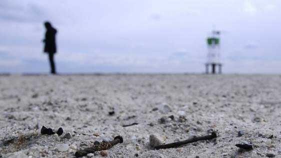 Bass river Beach nail 2.26