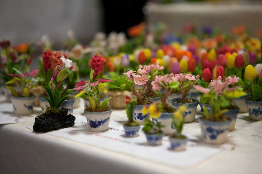 The small artificial plants at the show.