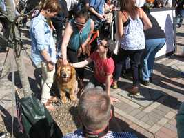 """Visitors to the Copley Square memorial stopping to pet a """"comfort"""" dog. In the background, others are signing a poster that is part of the memorial."""