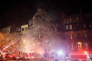 """""""Watch out, the tree may fall down anytime"""" said a firefighter after dark."""