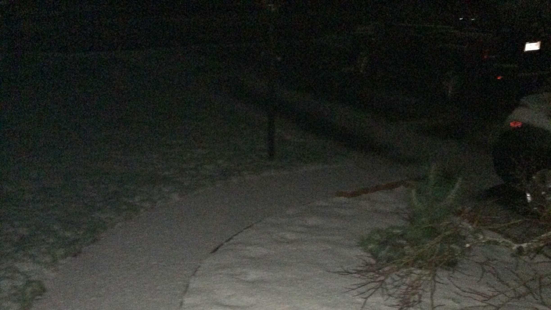 Snow 4.16