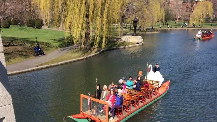 boston swan boats 041914.jpg