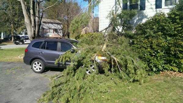 A tree down on a car and home on Gov. Peabody Road in Billerica.