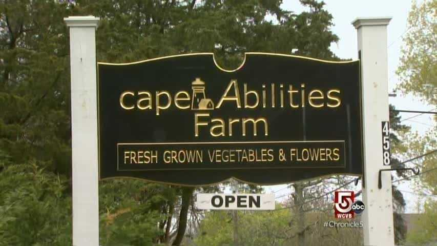Cape Abilities is a non-profit organization, providing training and paid employment to people with disabilities.