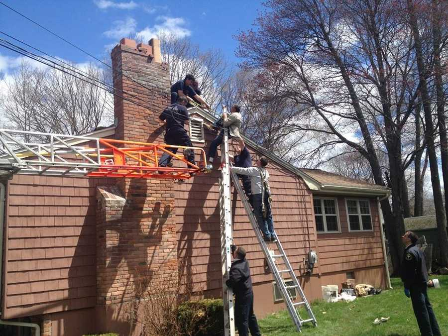 After falling from the ladder, police said he became entangled in the power line supplying the home.