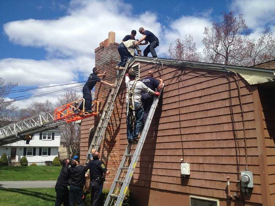 Milford first responders and a National Grid linesman helped to rescue the man.