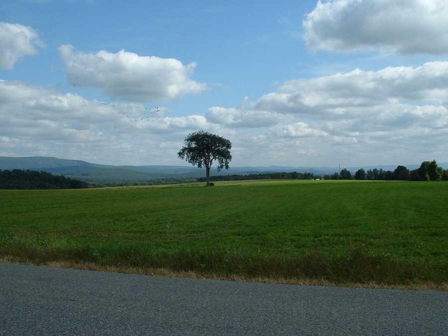 Egremont -- Population 1,224