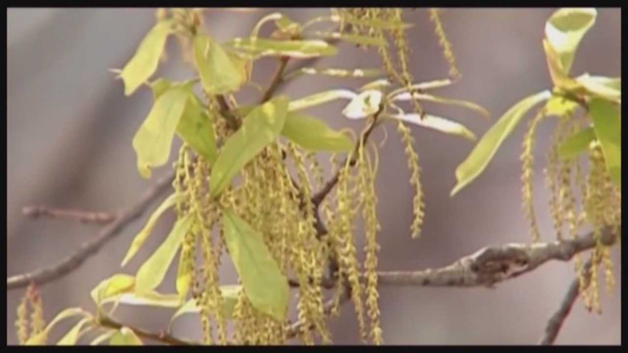 New help for seasonal allergy sufferers