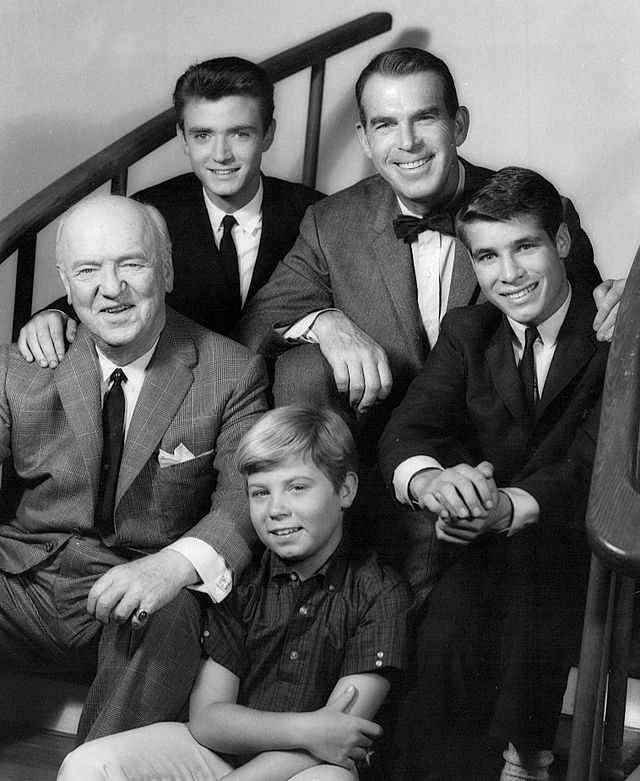 "14.) Steve Douglas -- ""My Three Sons"""