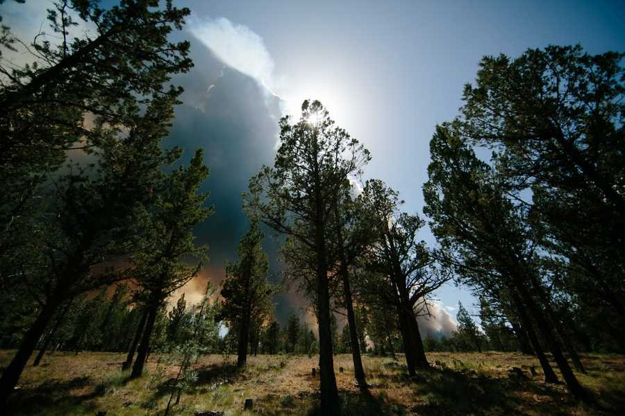 A fire truck rolled up at Rock Spring Ranch near Bend with sirens blaring Saturday and the wedding party was told to evacuate, The Oregonian reported.