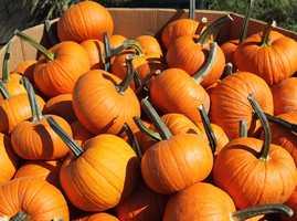 #19 Pumpkin: 33.82 nutrient density score.