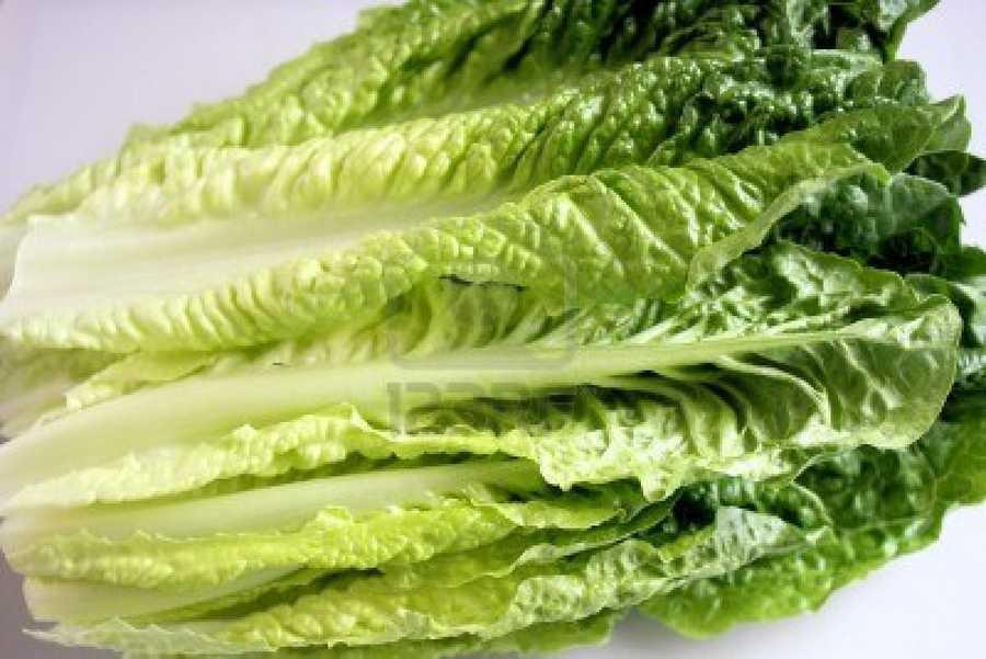 #9 Romaine Lettuce: 62.49 nutrient density score.