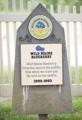 Wild Maine Blueberry1992 – 1993Blueberry ice cream with Maine blueberry puree and wild Maine blueberries.
