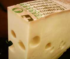Many cases of foodborne illness are due to the consumption of unpasteurized cheese.