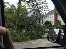 The storm brought down a large tree on a home on Park Ave. in Revere.