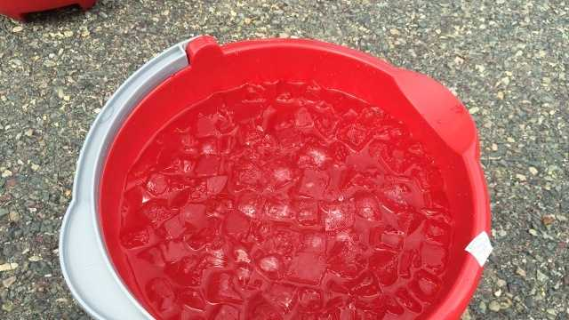 Generic-Ice-Bucket-Challenge-0821.jpg