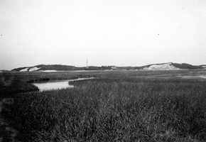 Cape Cod National Seashore, Massachusetts. Northeast side of the marsh west of the breakwater at the southwest end of Provincetown. August 30, 1916.