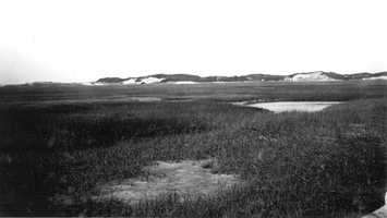Cape Cod National Seashore, Massachusetts. Dunes on the northeast side of the shore west of the breakwater in Provincetown. August 30, 1916.