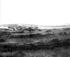 Cape Cod National Seashore, Massachusetts. North side of Pilgrim Lake at the east end of Provincetown. August 30, 1916