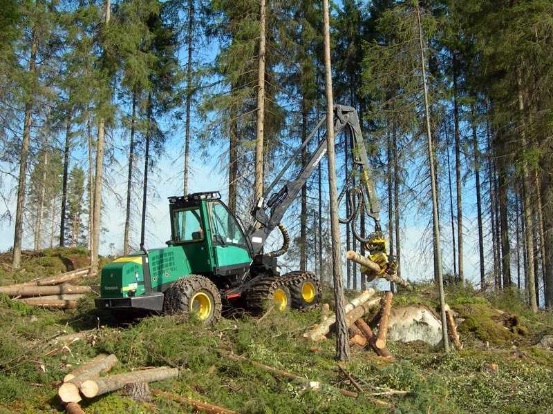 Logging workers: Median salary - $34,190Harvesting forest is injury-prone even when it's done safely and correctly. Workers need to pay attention to falling branches, hills, flying wood chips and chain saws.