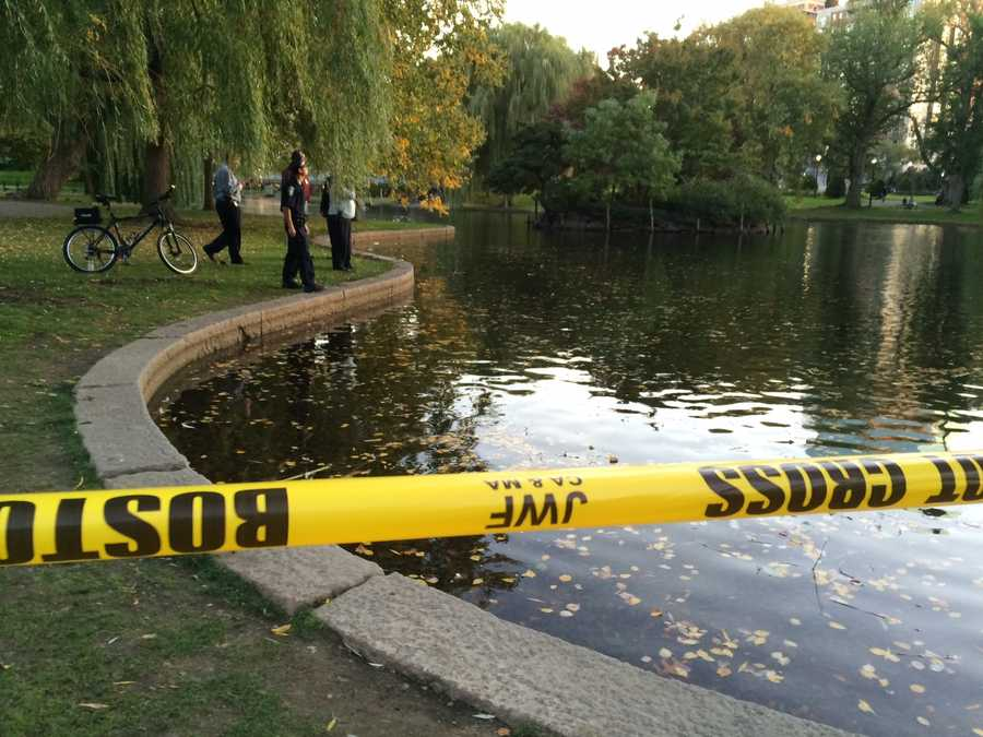 Boston Police roped off a portion of the Public Garden lagoon and were searching for a possible weapon.