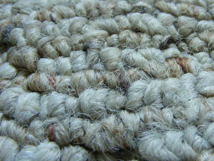 5) Your carpet