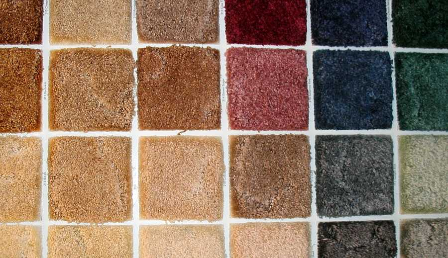 200,000 bacteria live in each square inch of carpet (nearly 700 times more than on your toilet seat), including E. coli, staphylococcus and salmonella.