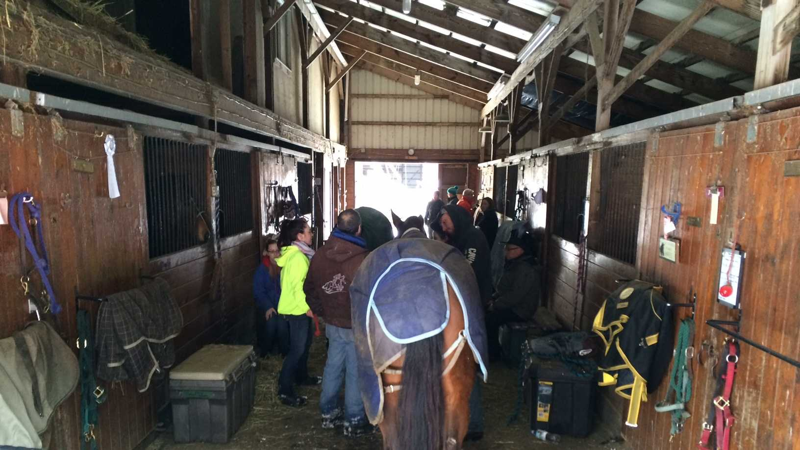 Three horses were trapped in the barn after the collapse, but were removed safely by 9:45 a.m. Four additional horses were safely removed from the barn shortly after the collapse.