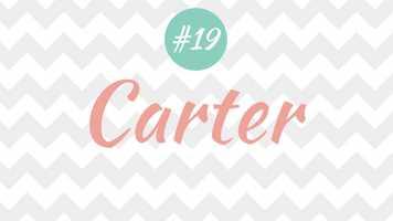 19 - Carter