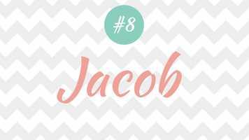 8 - Jacob