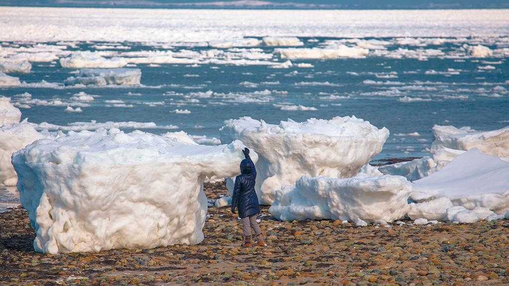 Human-size icebergs on Duck Beach in Wellfleet on March 9, 2015.Photo courtesy:  Dapixara Photography